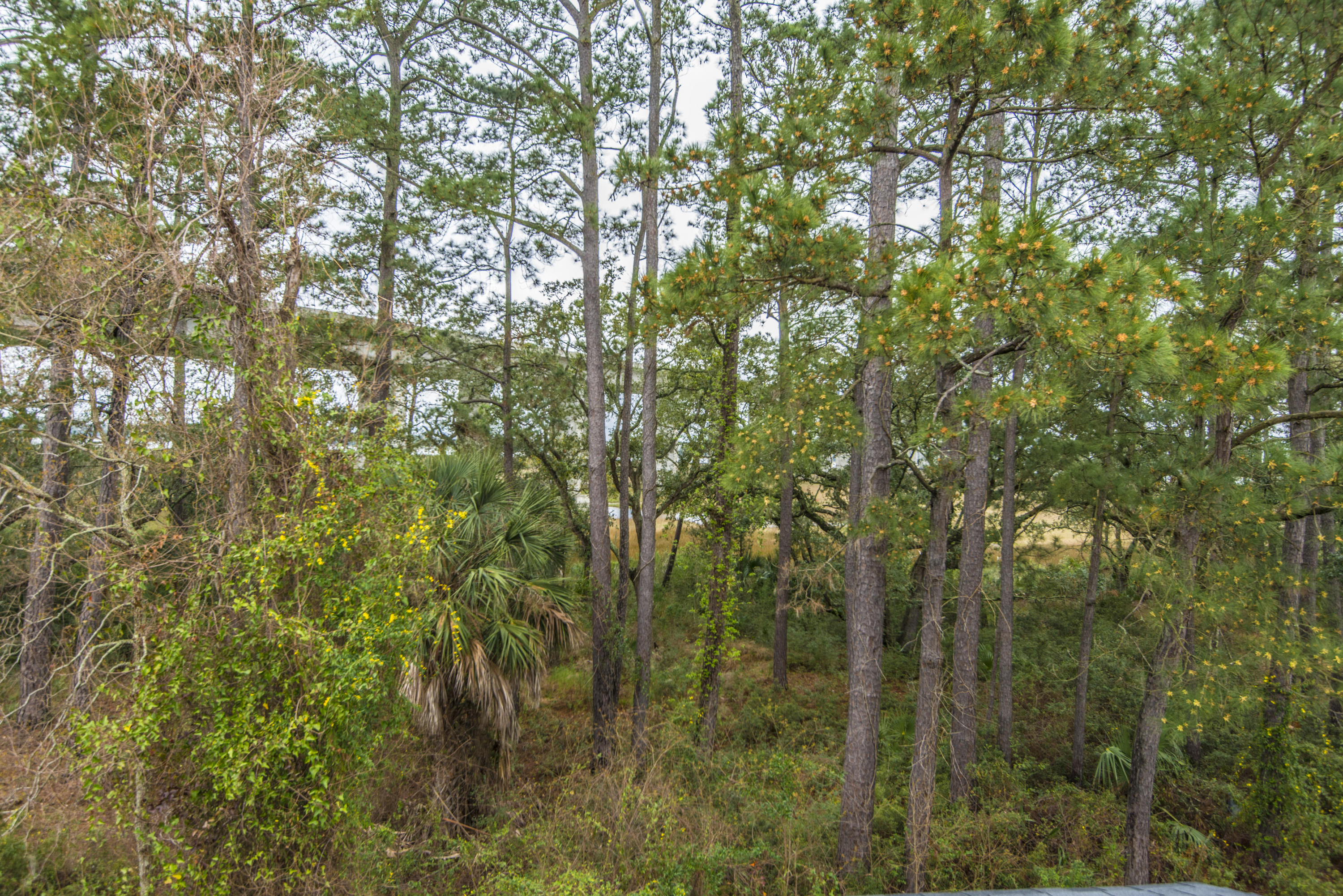 Etiwan Pointe Homes For Sale - 92 Salty Tide, Mount Pleasant, SC - 15