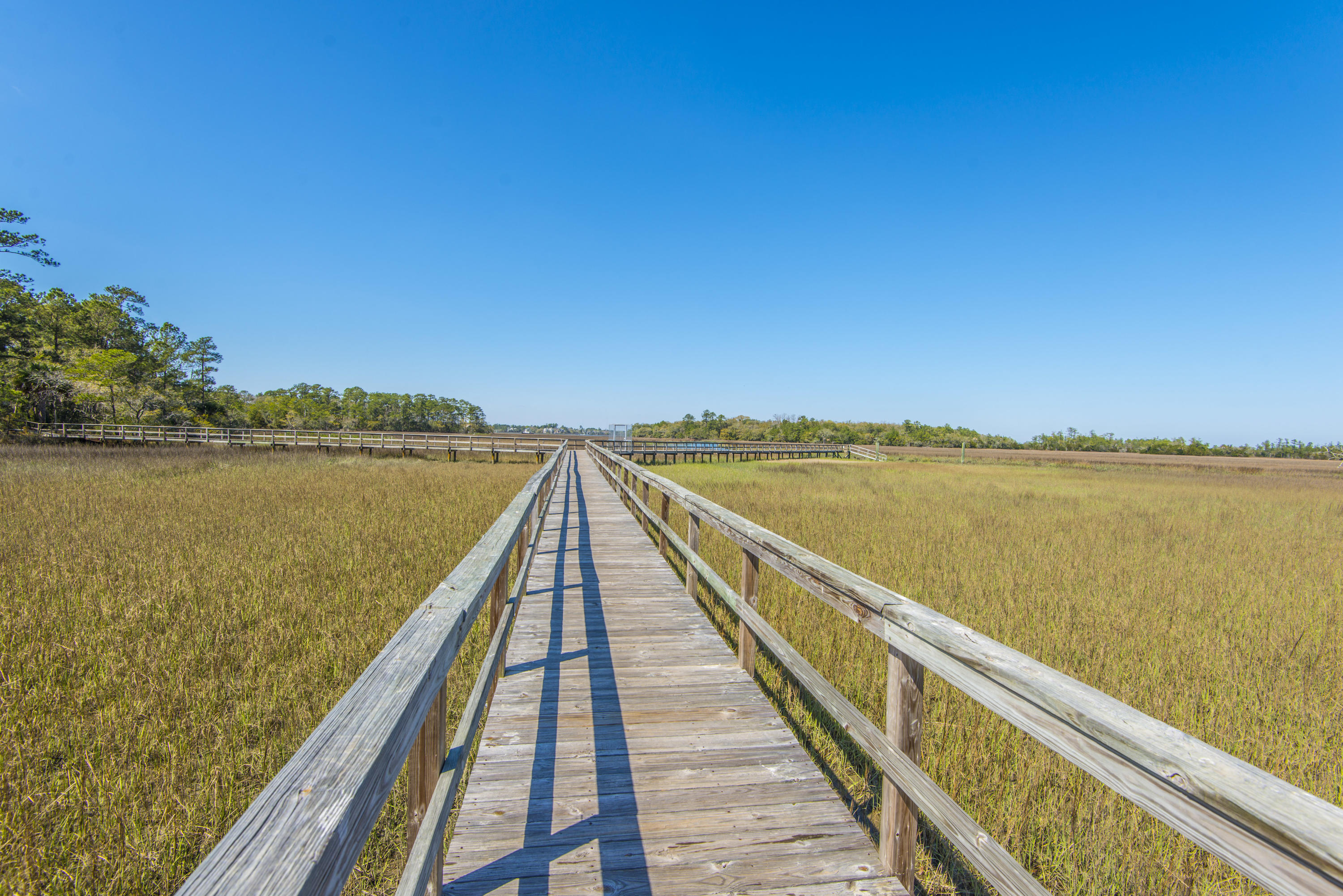 Etiwan Pointe Homes For Sale - 92 Salty Tide, Mount Pleasant, SC - 12