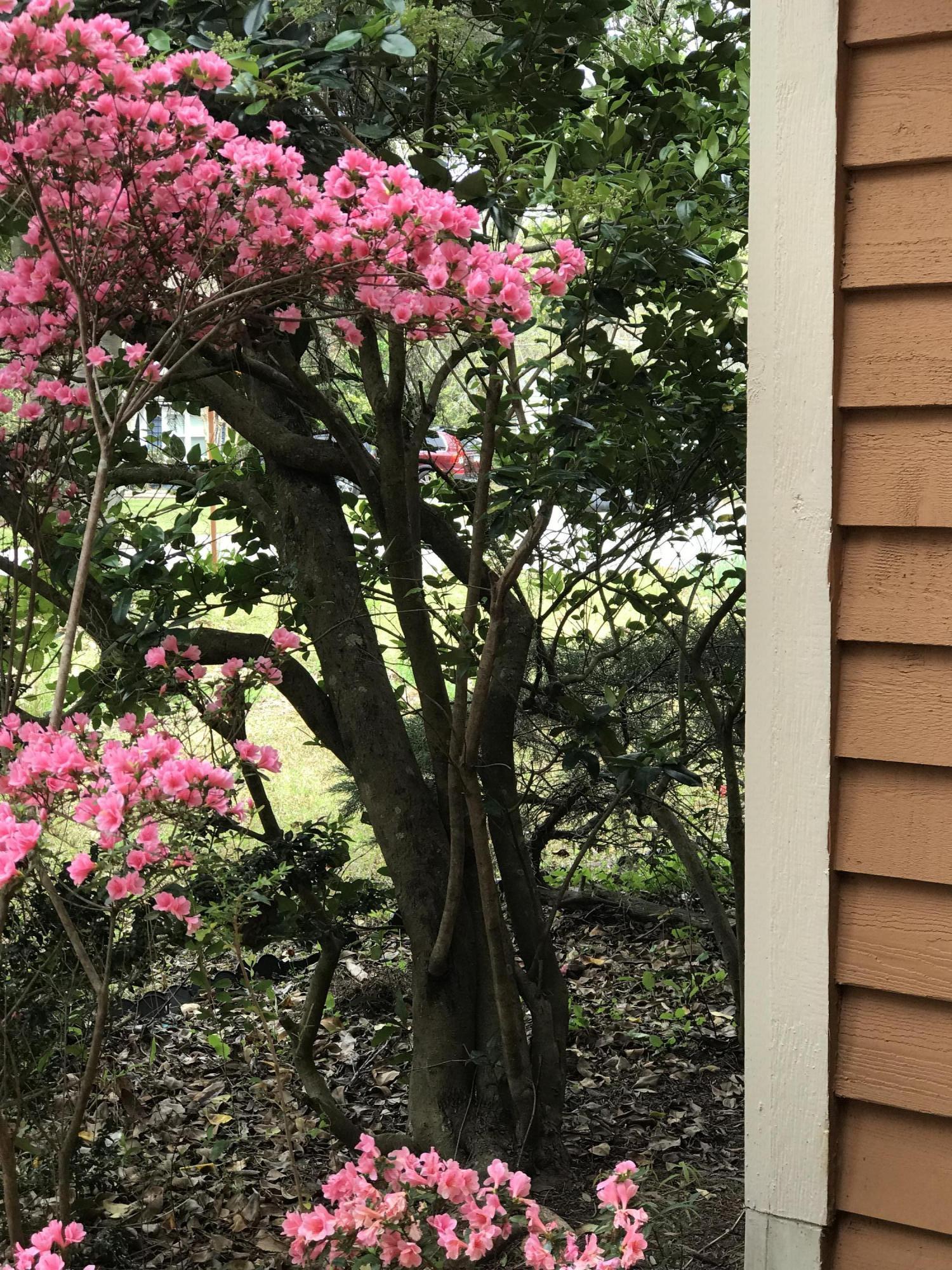Willow Walk Homes For Sale - 1102 Oakcrest, Charleston, SC - 0
