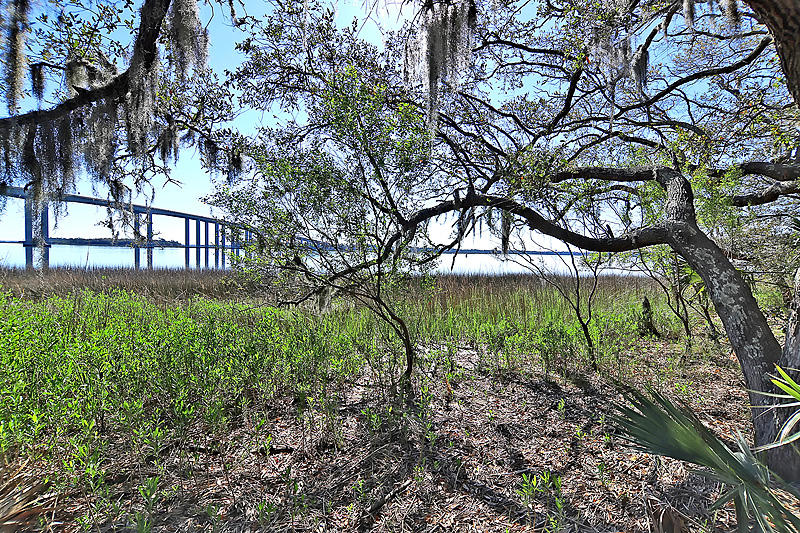 Daniels Landing Homes For Sale - 130 River Landing, Charleston, SC - 10