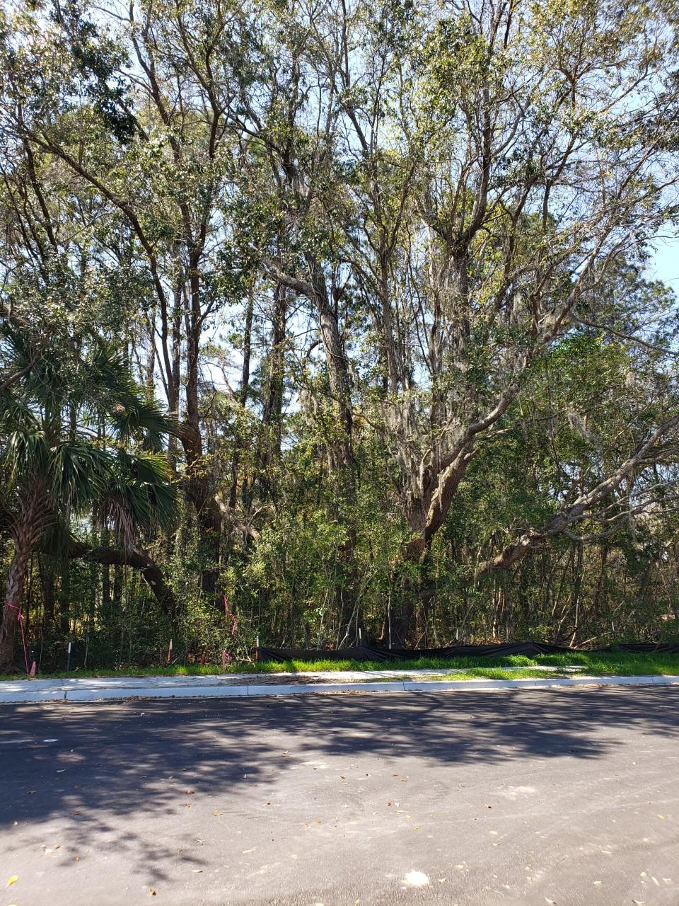 Midtown Homes For Sale - 1563 Low Park, Mount Pleasant, SC - 4
