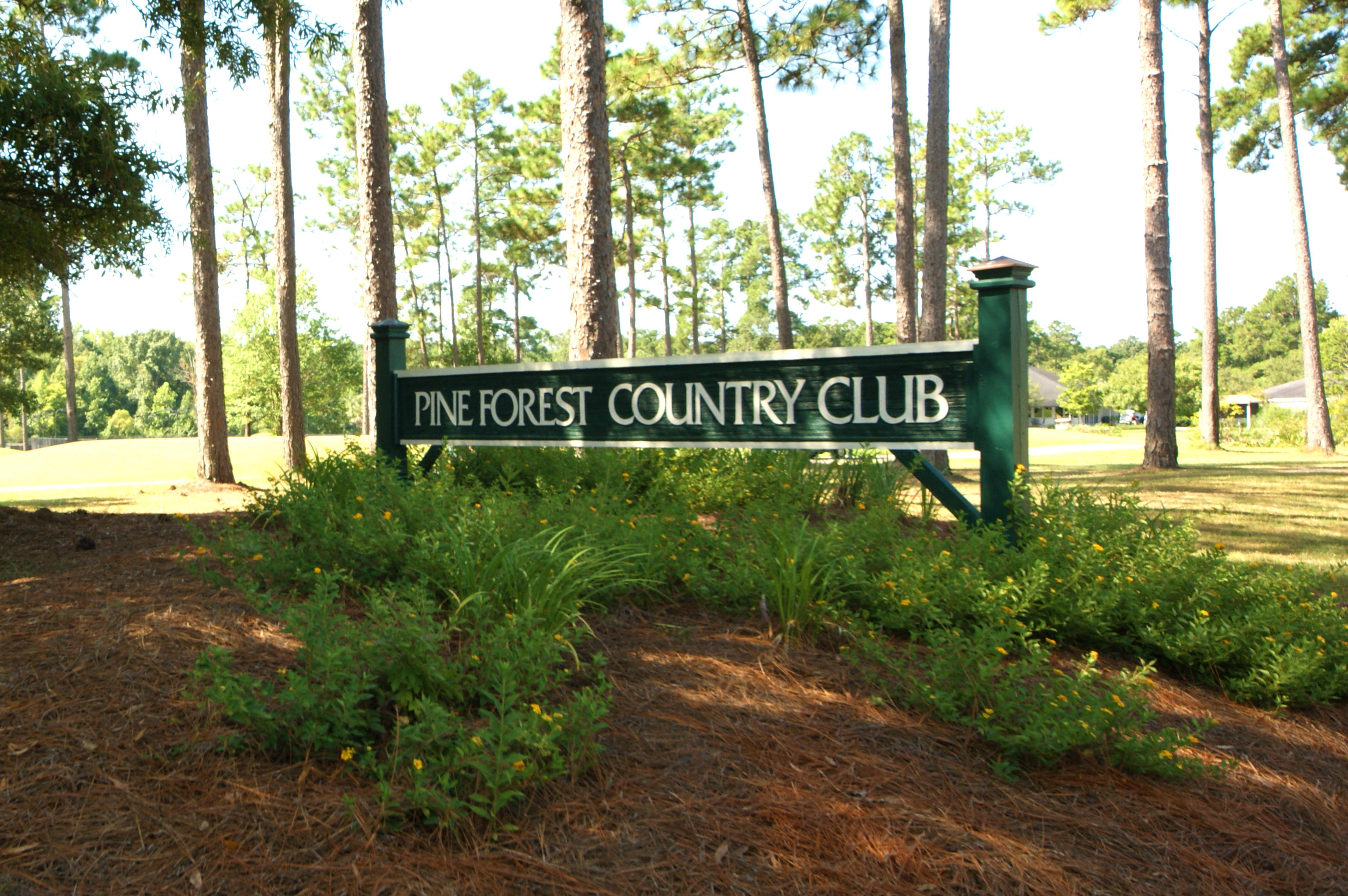 Pine Forest Country Club Homes For Sale - 626 Kilarney, Summerville, SC - 28