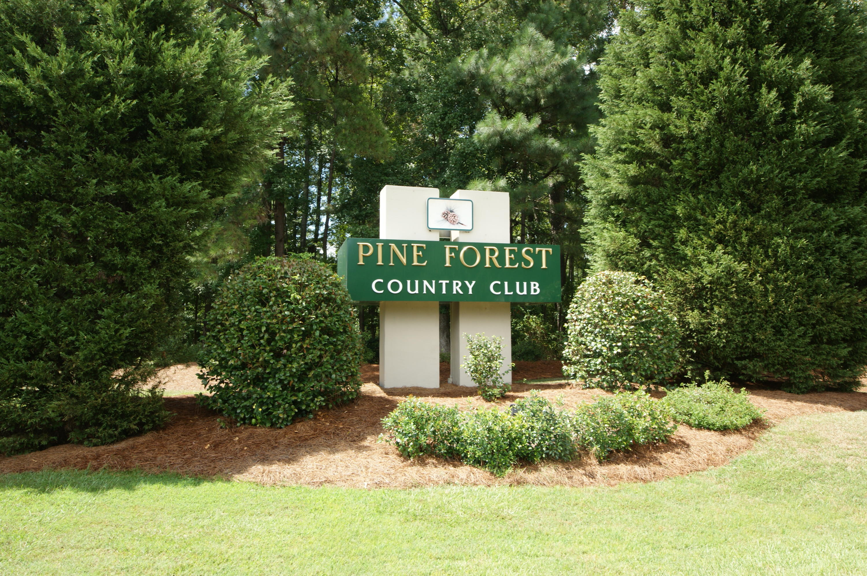 Pine Forest Country Club Homes For Sale - 624 Kilarney, Summerville, SC - 29