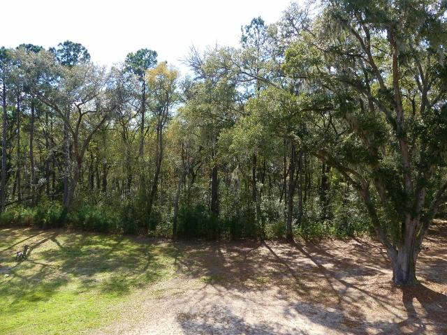 Jenkins Hill Plantation Homes For Sale - 7875 Louis Berry, Edisto Island, SC - 2