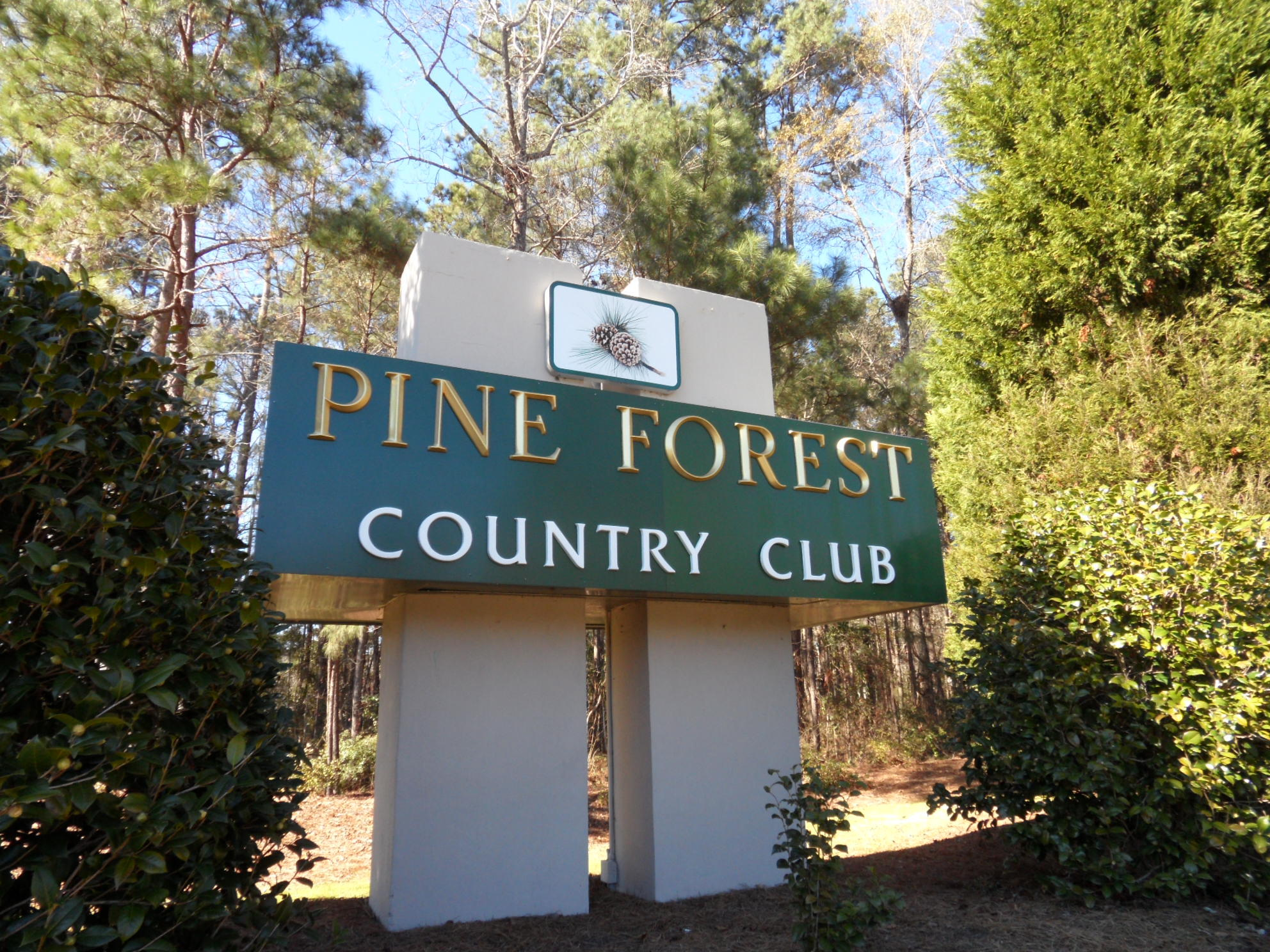 Pine Forest Country Club Homes For Sale - 700 Kilarney, Summerville, SC - 12