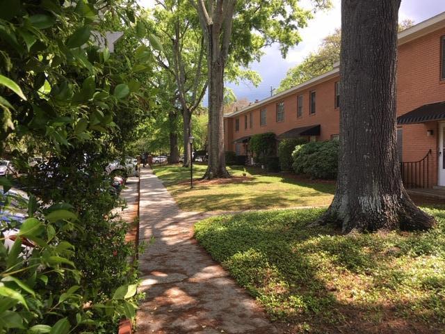 Rutledge Green Homes For Sale - 173 Rutledge Ave, Charleston, SC - 7