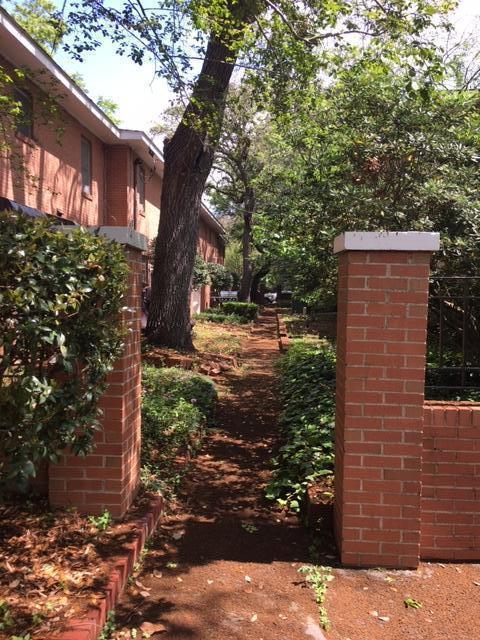 Rutledge Green Homes For Sale - 173 Rutledge Ave, Charleston, SC - 12