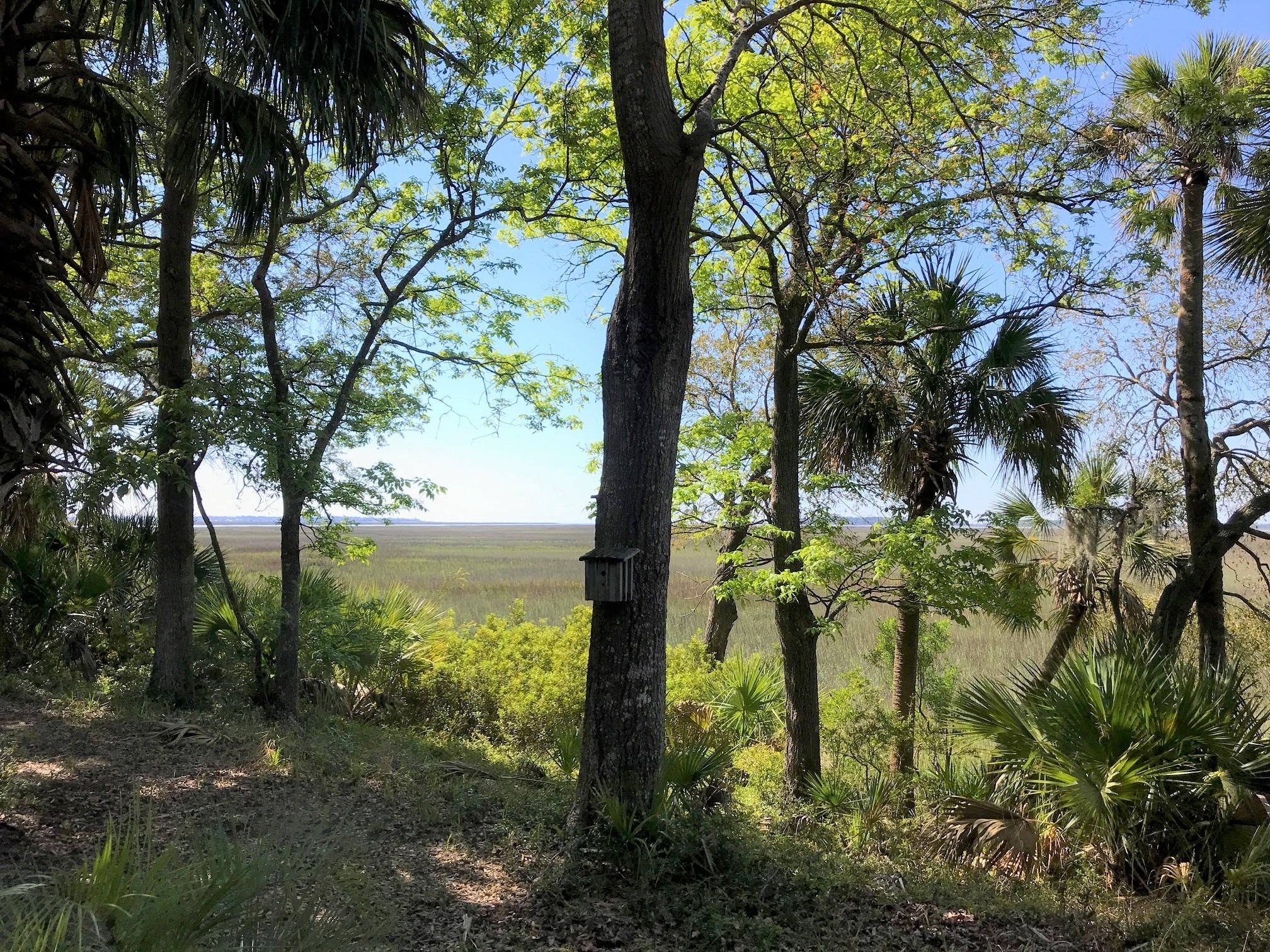 Bailey Island Homes For Sale - 2012 Bailey Island, Edisto Island, SC - 68