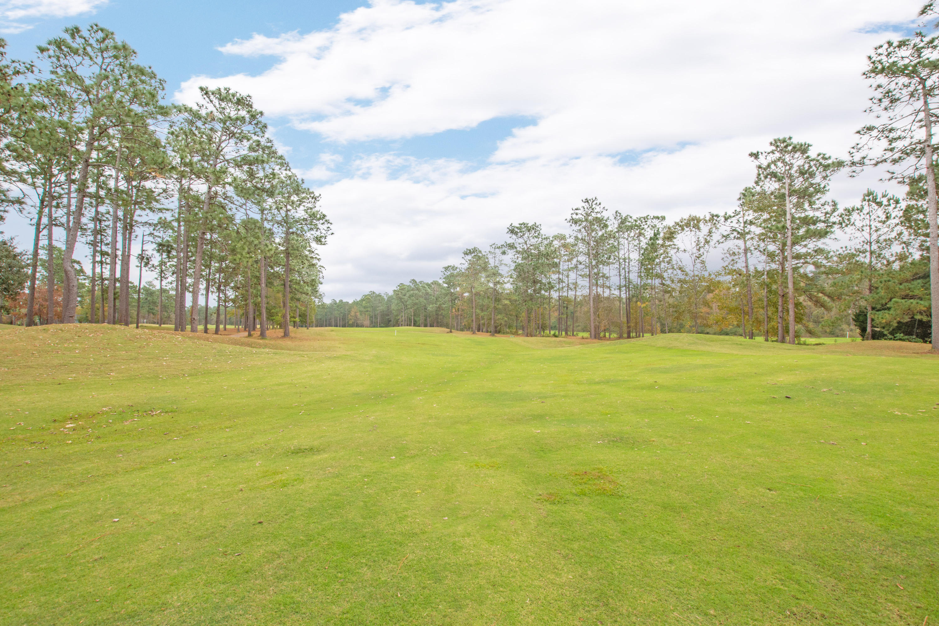 Pine Forest Country Club Homes For Sale - 108 Horseshoe Bay, Summerville, SC - 16
