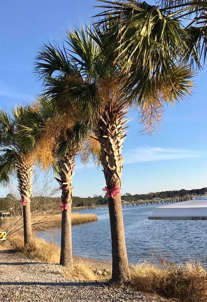 Edgewater Park Homes For Sale - 1356 Emory, Charleston, SC - 22