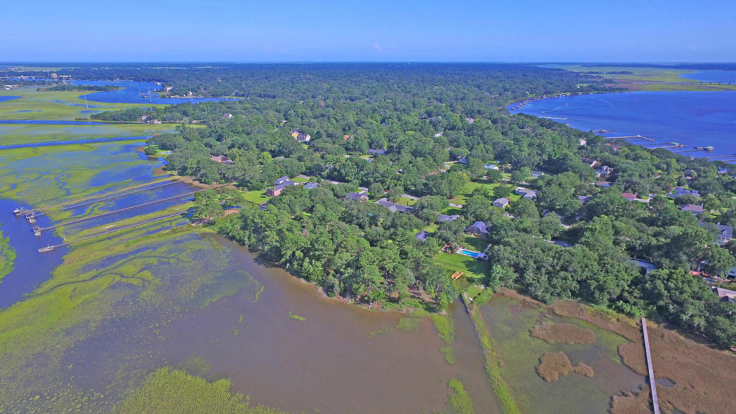 Edgewater Park Homes For Sale - 1356 Emory, Charleston, SC - 12