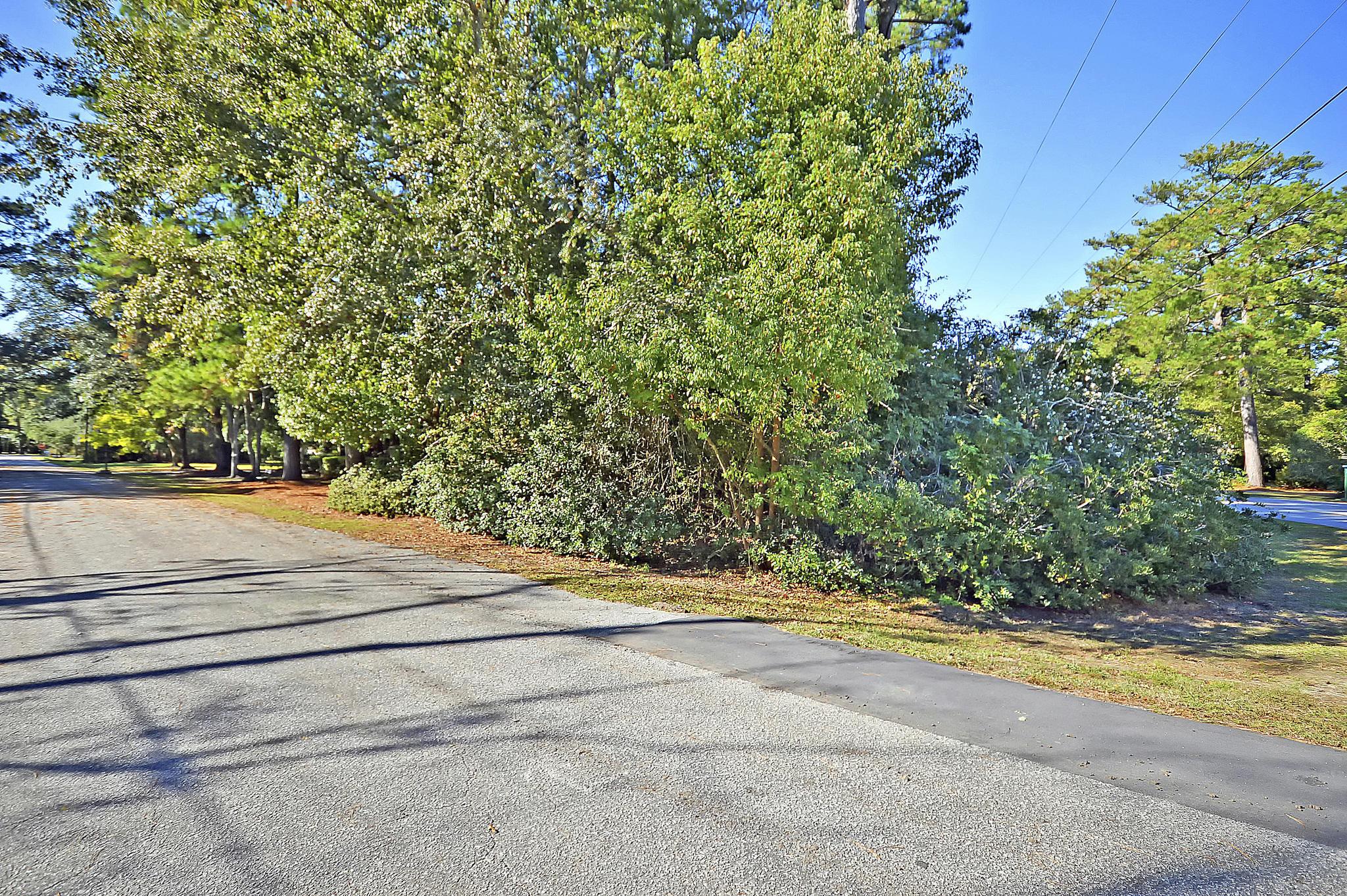 Edgewater Park Homes For Sale - 1356 Emory, Charleston, SC - 6