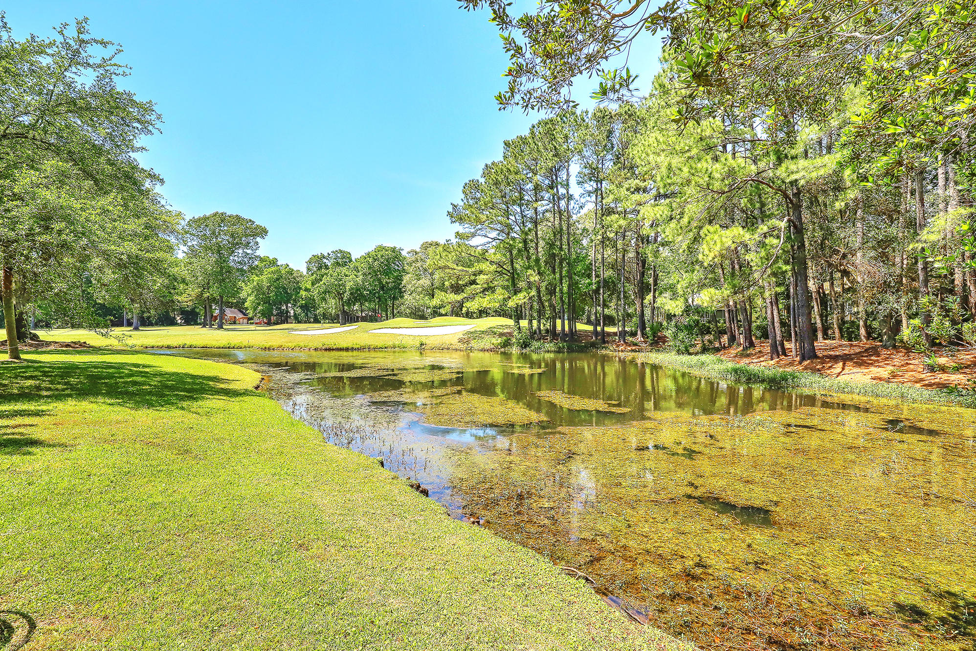 Stono Ferry Homes For Sale - 5104 St Ann, Hollywood, SC - 22