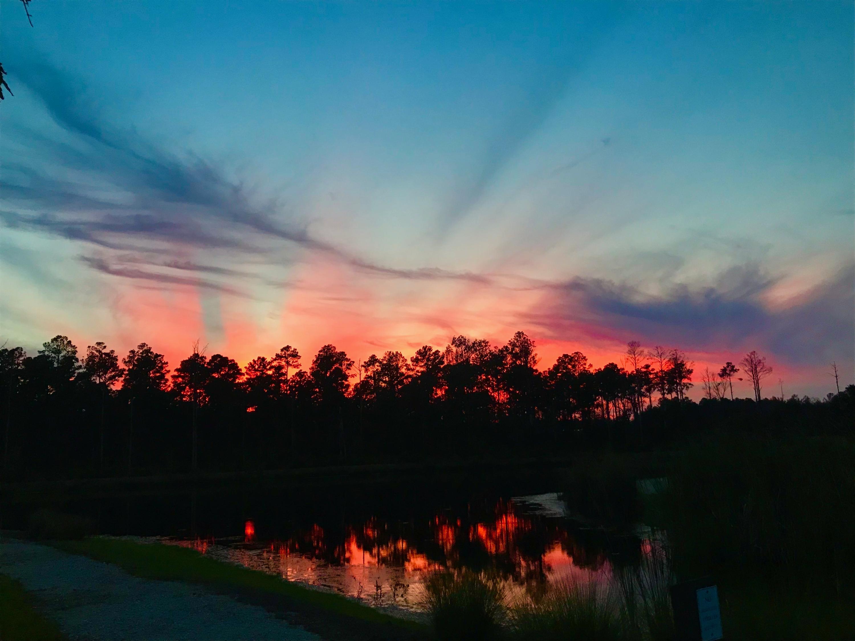 Carolina Park Homes For Sale - 1538 Watt Pond, Mount Pleasant, SC - 34
