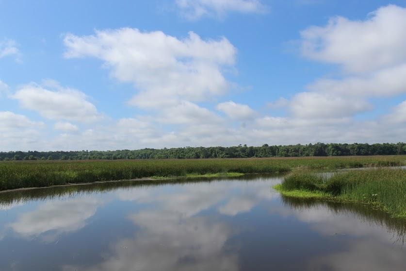 Taylor Plantation Homes For Sale - 8468 Rice Basket, North Charleston, SC - 34