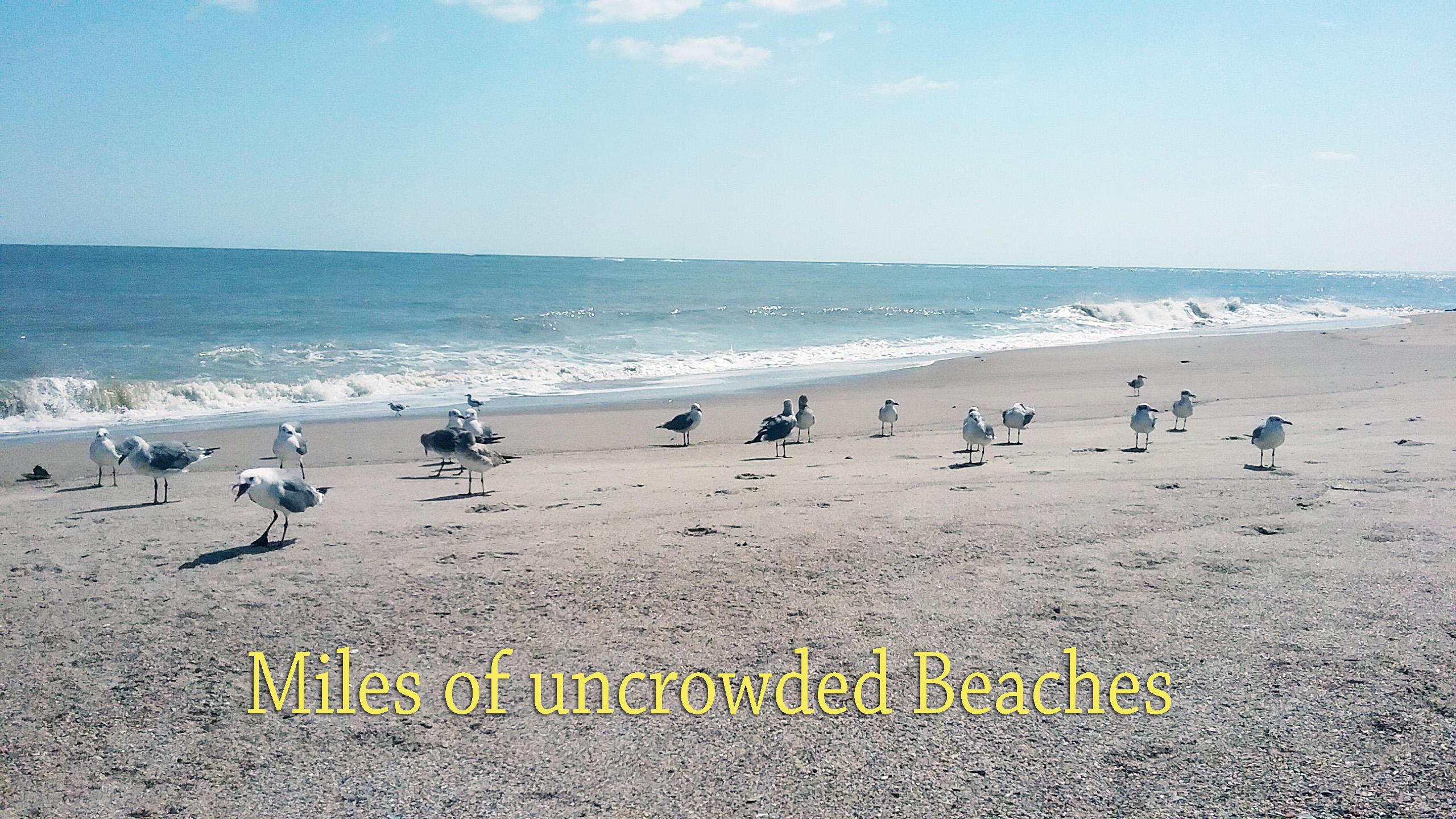 Wyndham Ocean Ridge Homes For Sale - 351 Sea Cloud Circle, Edisto Beach, SC - 1