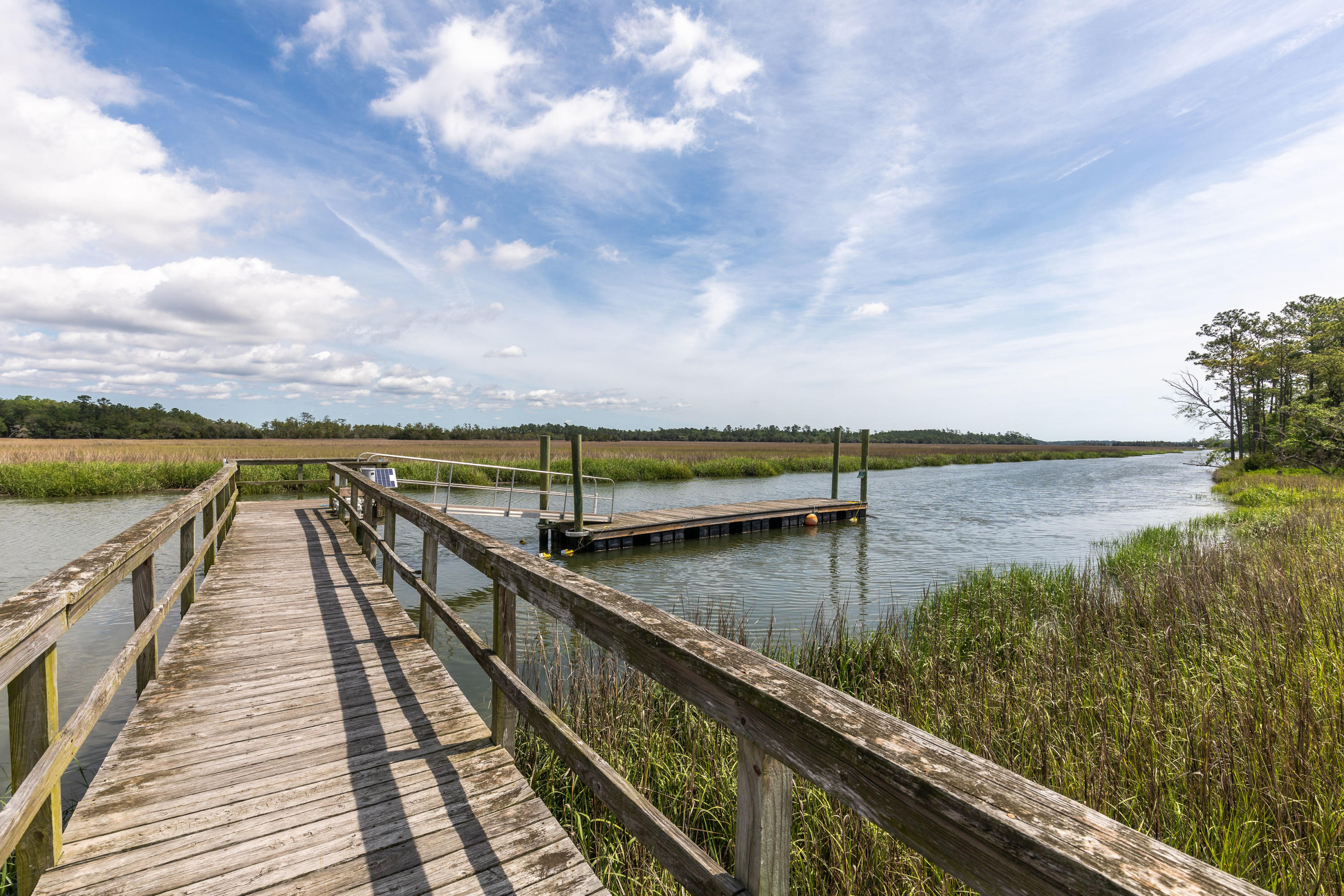 Etiwan Pointe Homes For Sale - 116 Summers Creek, Mount Pleasant, SC - 7