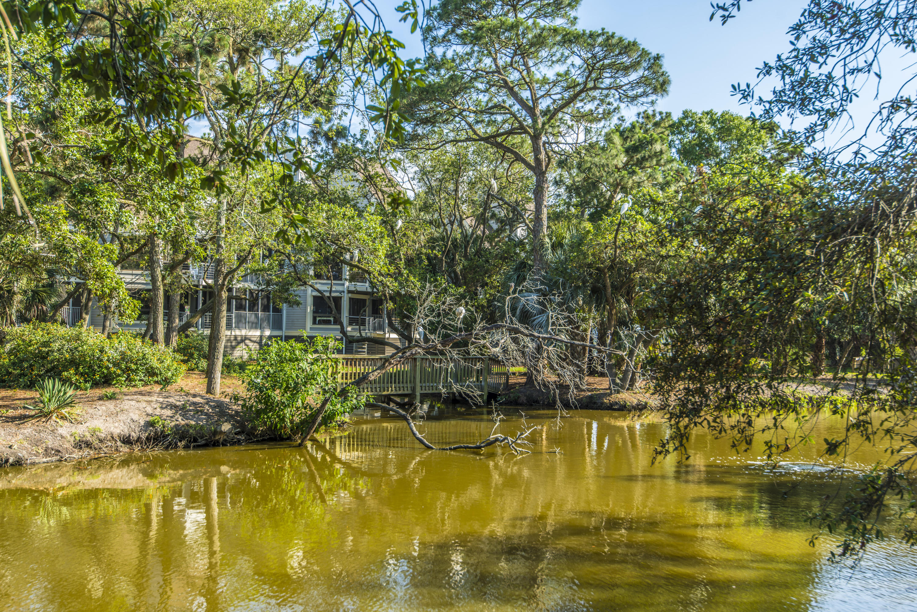 Little Oak Island Homes For Sale - 251 Little Oak, Folly Beach, SC - 41