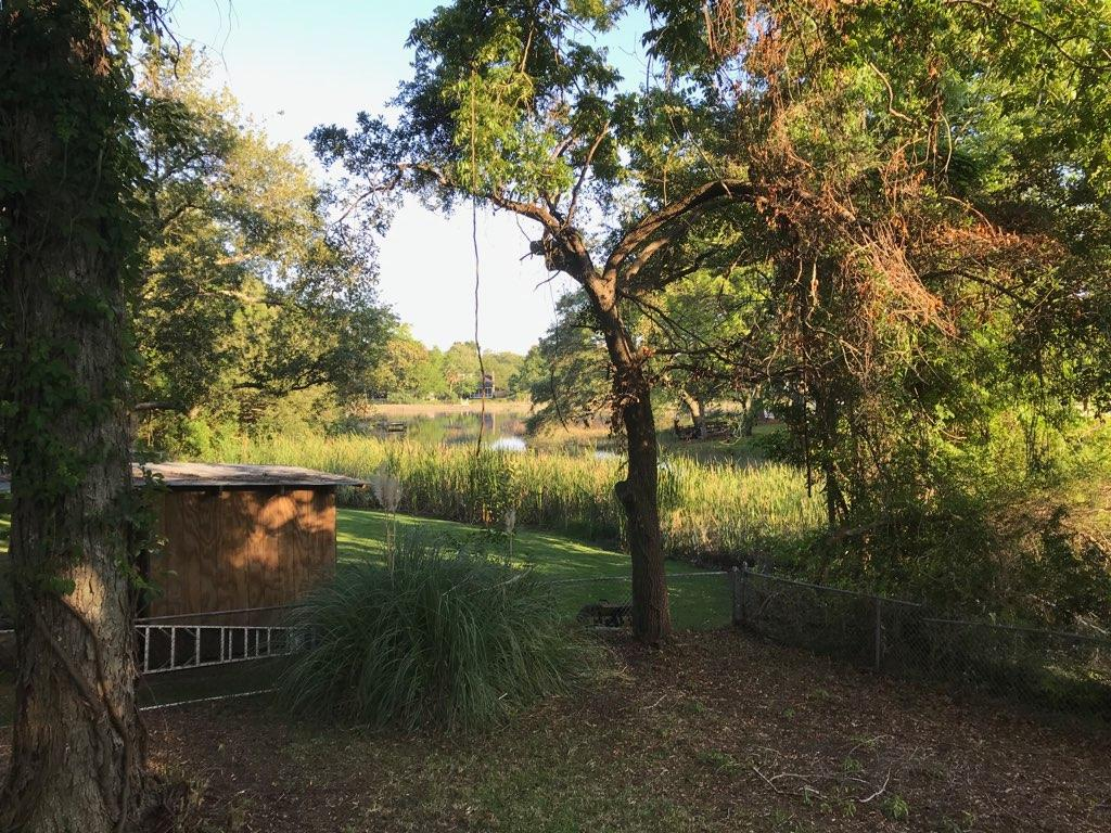 Dellwood Homes For Sale - 737 Leafwood, Charleston, SC - 19