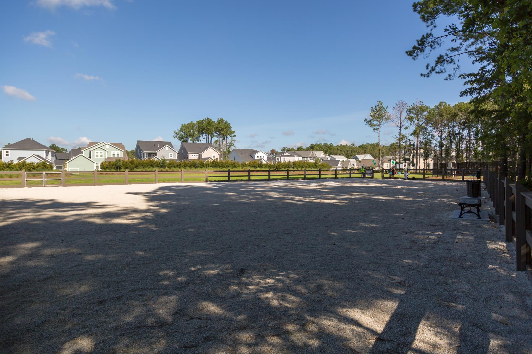 Carolina Park Homes For Sale - 1701 Banning, Mount Pleasant, SC - 4
