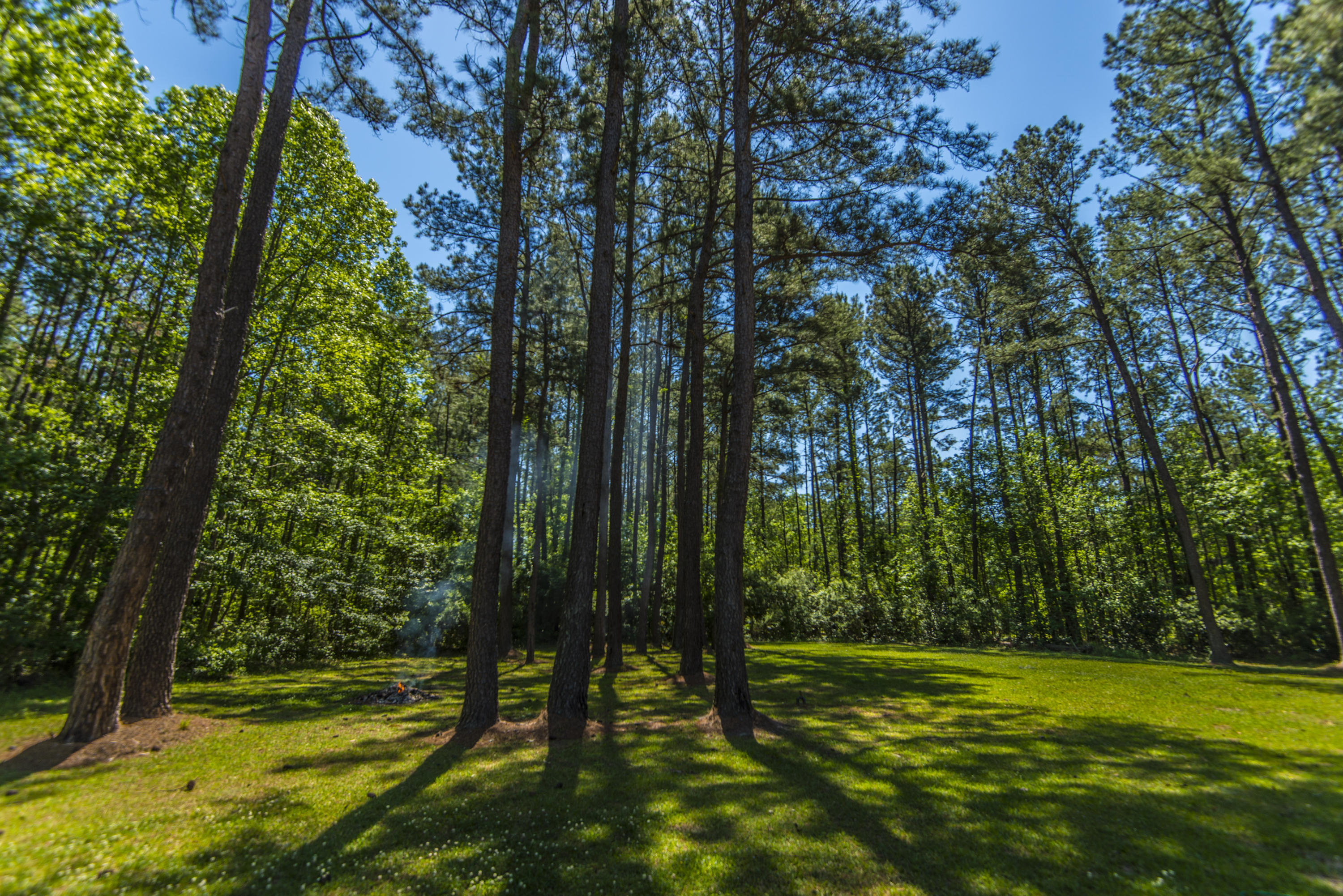 Tail Race Canal Homes For Sale - 266 Camp Christian, Moncks Corner, SC - 16