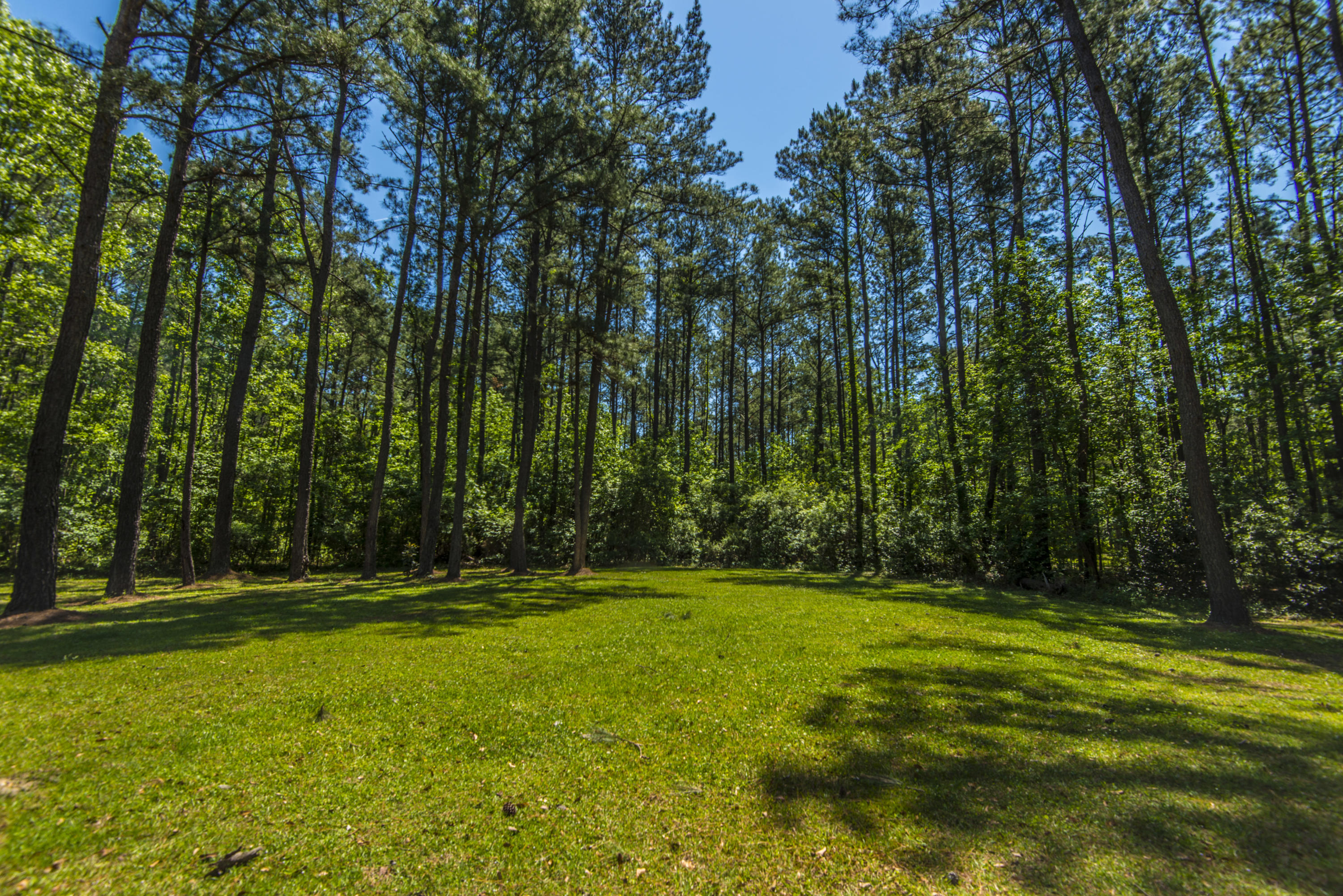 Tail Race Canal Homes For Sale - 266 Camp Christian, Moncks Corner, SC - 17