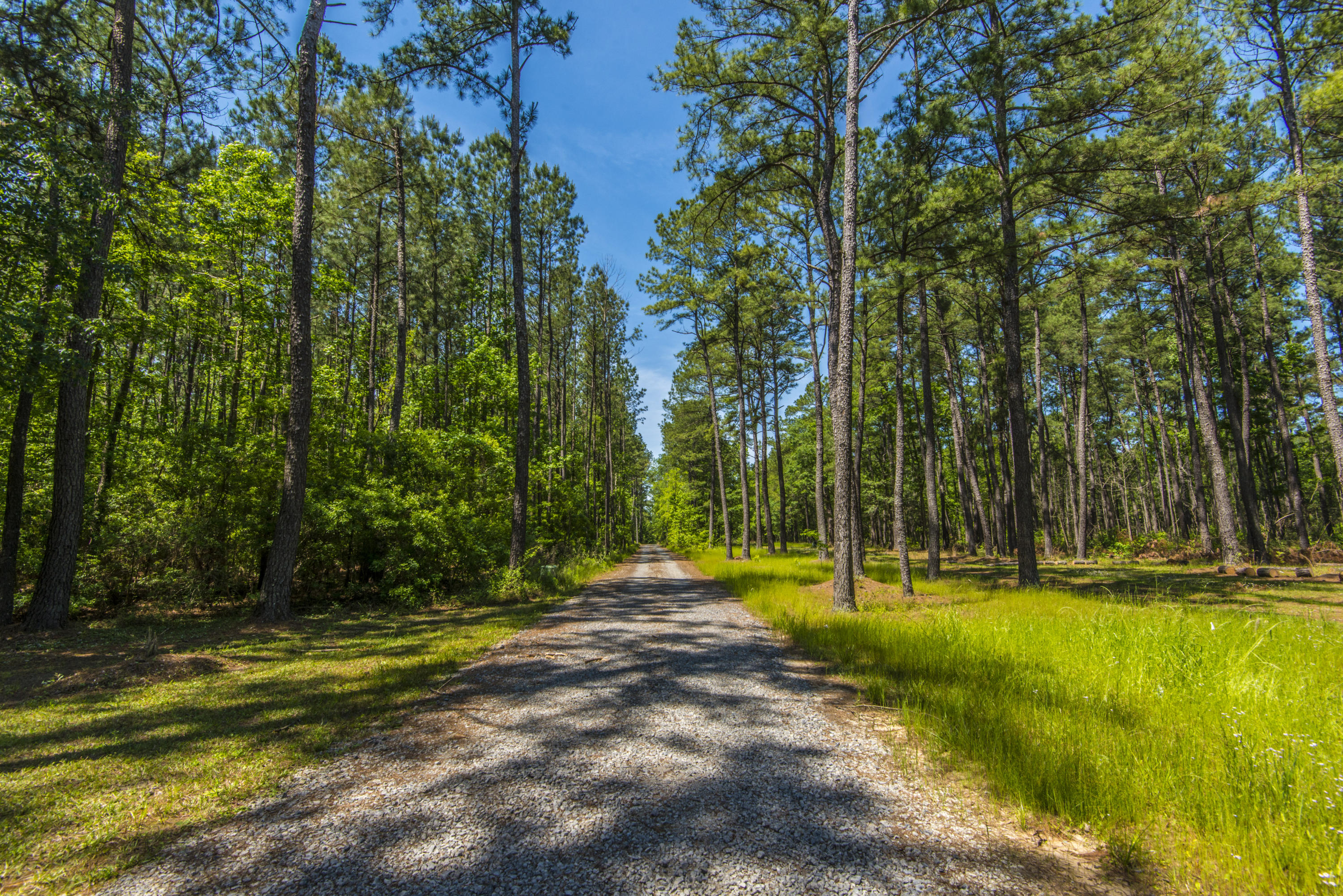 Tail Race Canal Homes For Sale - 266 Camp Christian, Moncks Corner, SC - 19