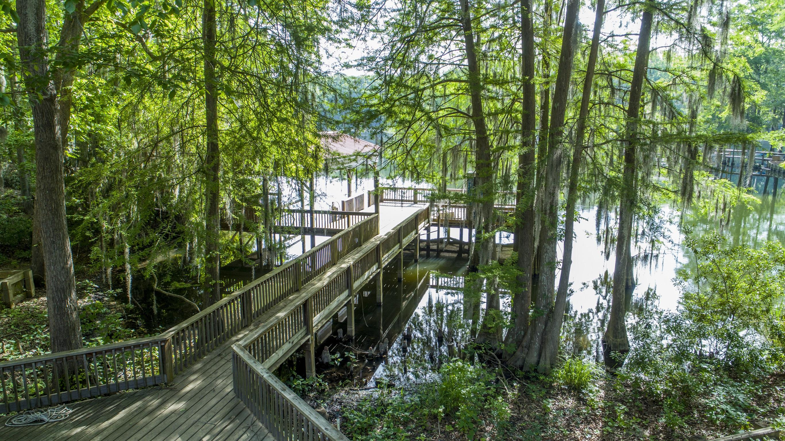 Pinckneys Mill Homes For Sale - 353 Legend, Santee, SC - 17