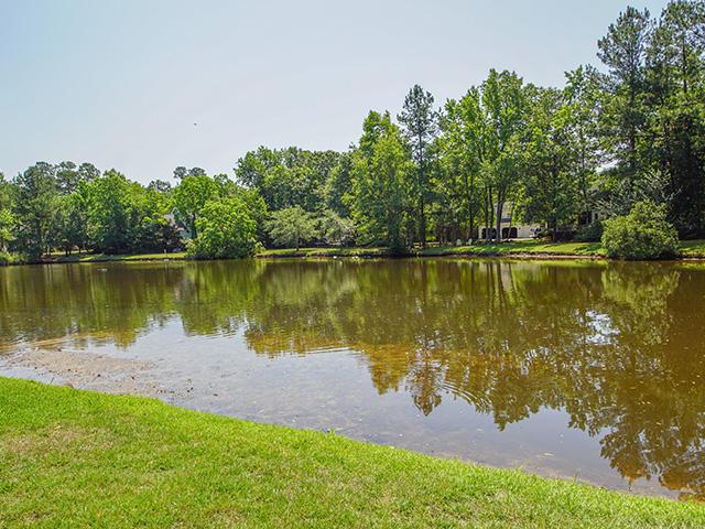 Gadsden Manor Homes For Sale - 107 Quinby, Summerville, SC - 50
