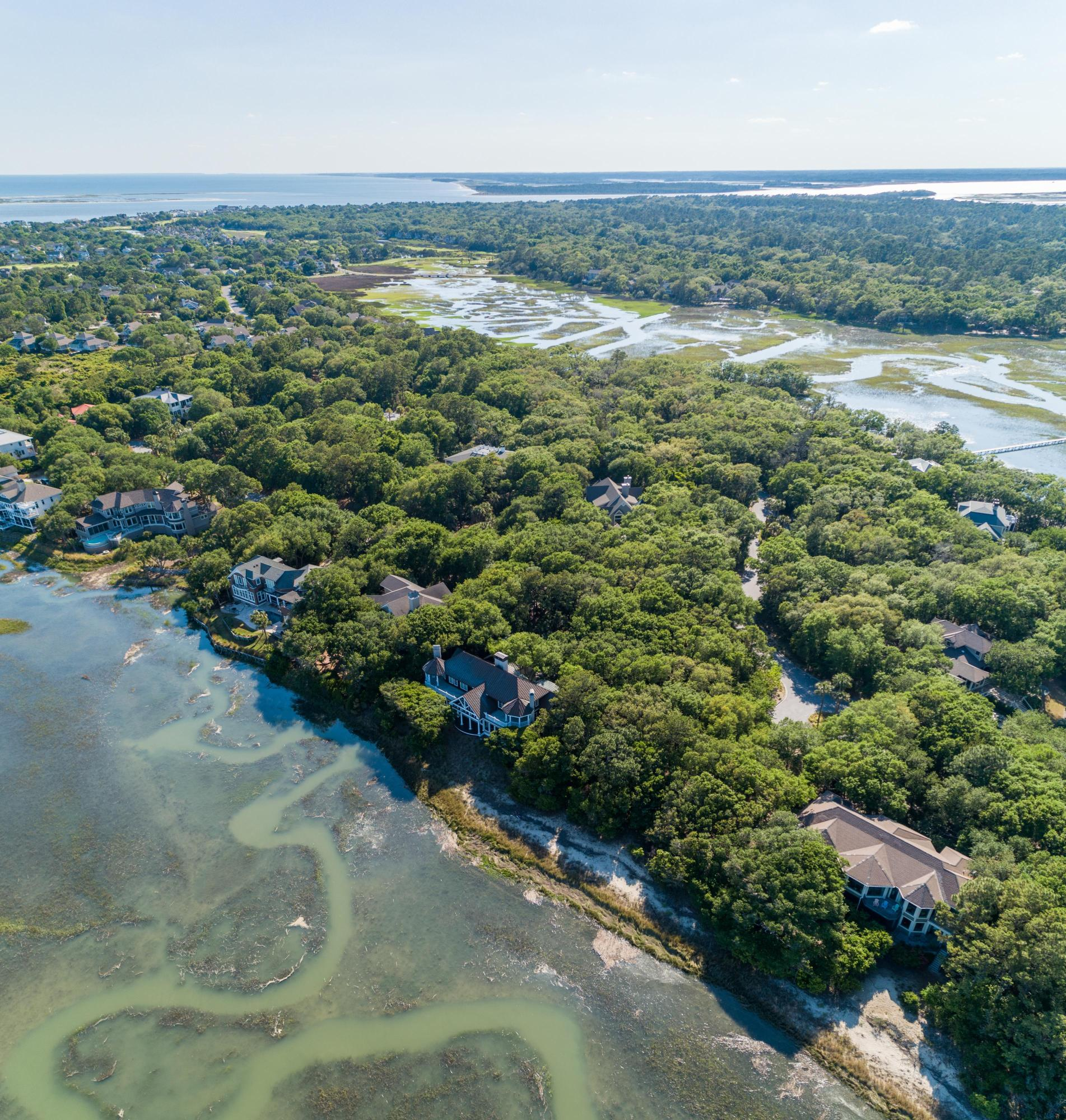 Seabrook Island Homes For Sale - 1161 Oyster Catcher, Seabrook Island, SC - 3
