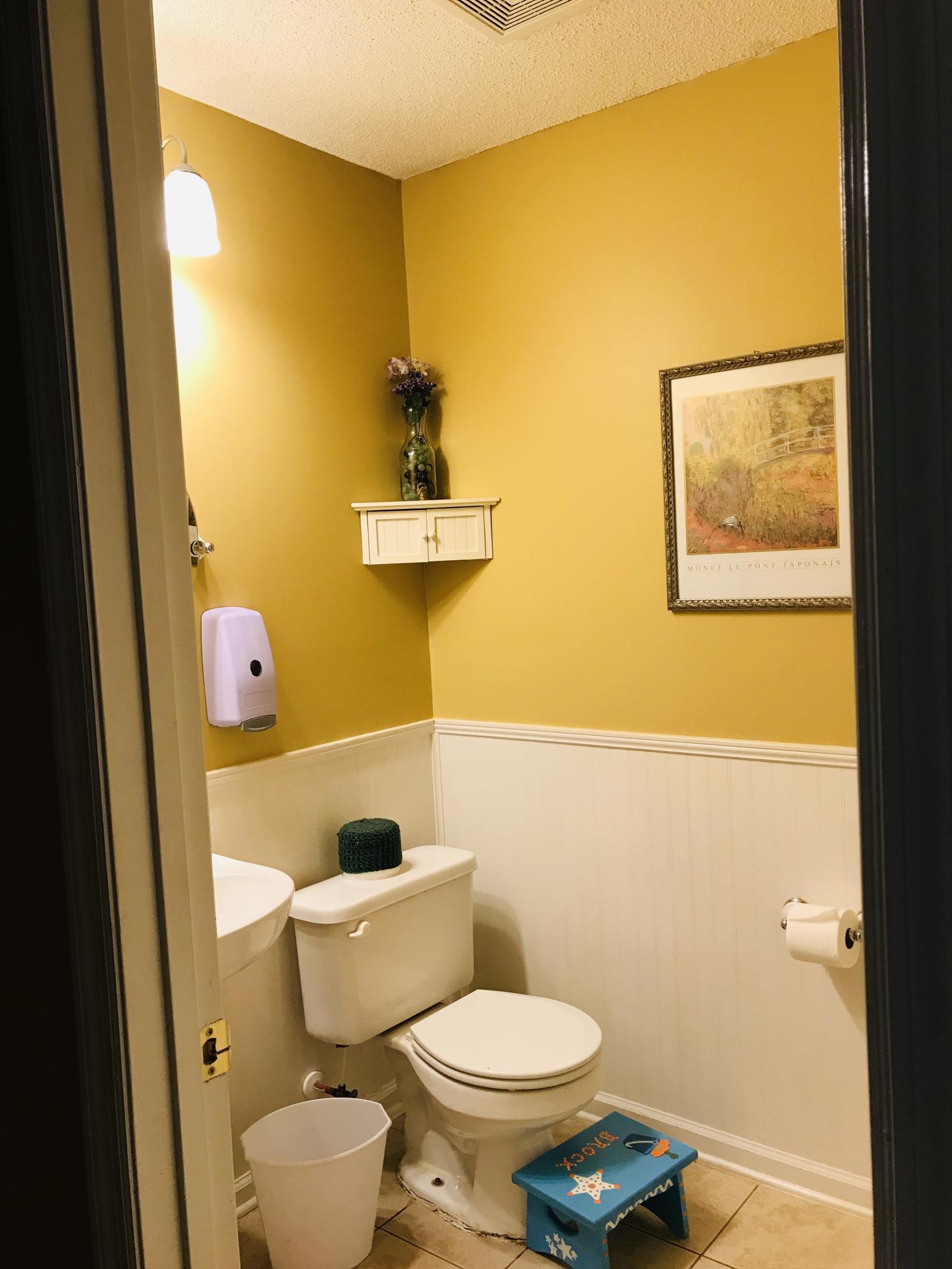 Brookwood Homes For Sale - 115 Destin, Summerville, SC - 9