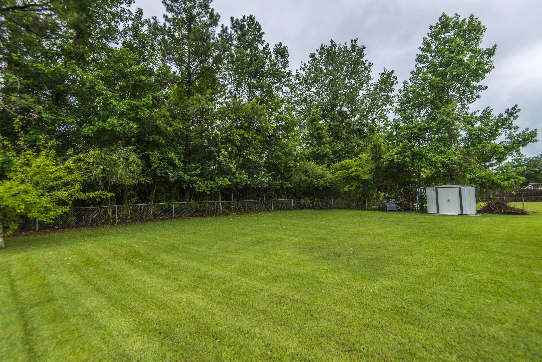 Conifer Hall Homes For Sale - 1003 Mountain Pine, Moncks Corner, SC - 16