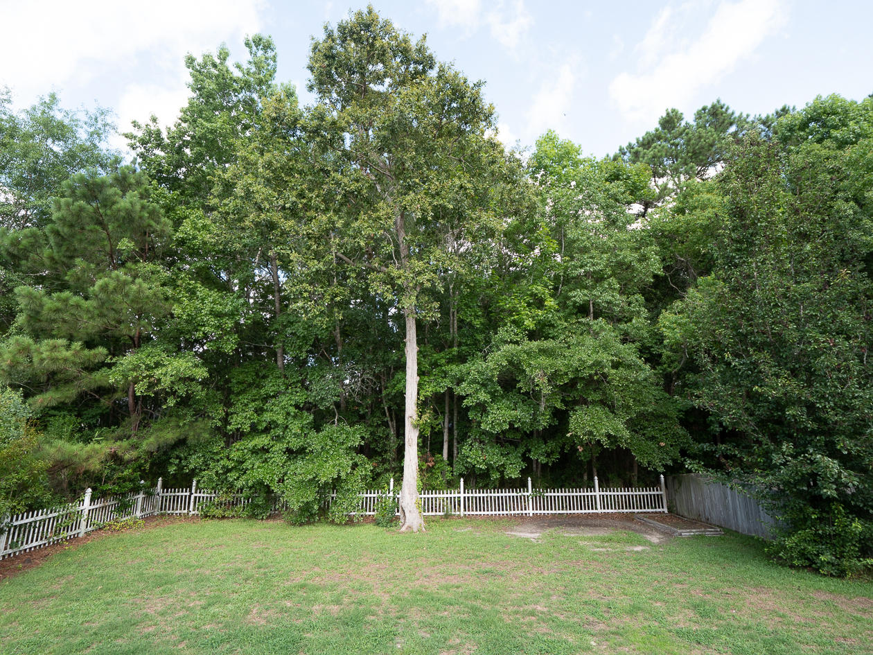 Planters Pointe Homes For Sale - 3383 Lindner, Mount Pleasant, SC - 26
