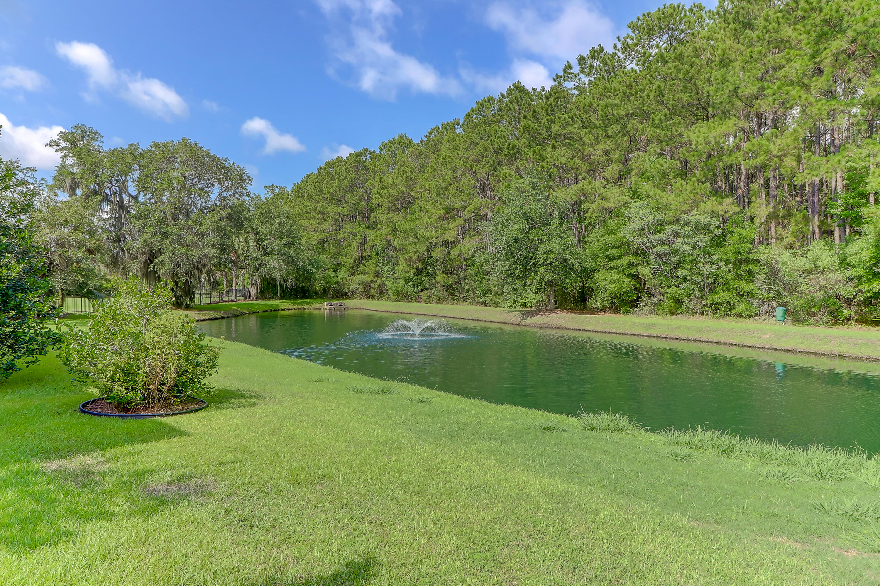 Beresford Creek Landing Homes For Sale - 1101 Beresford Run, Charleston, SC - 9