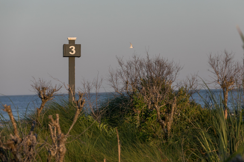 Seabrook Island Homes For Sale - 3640 Pompano, Seabrook Island, SC - 26