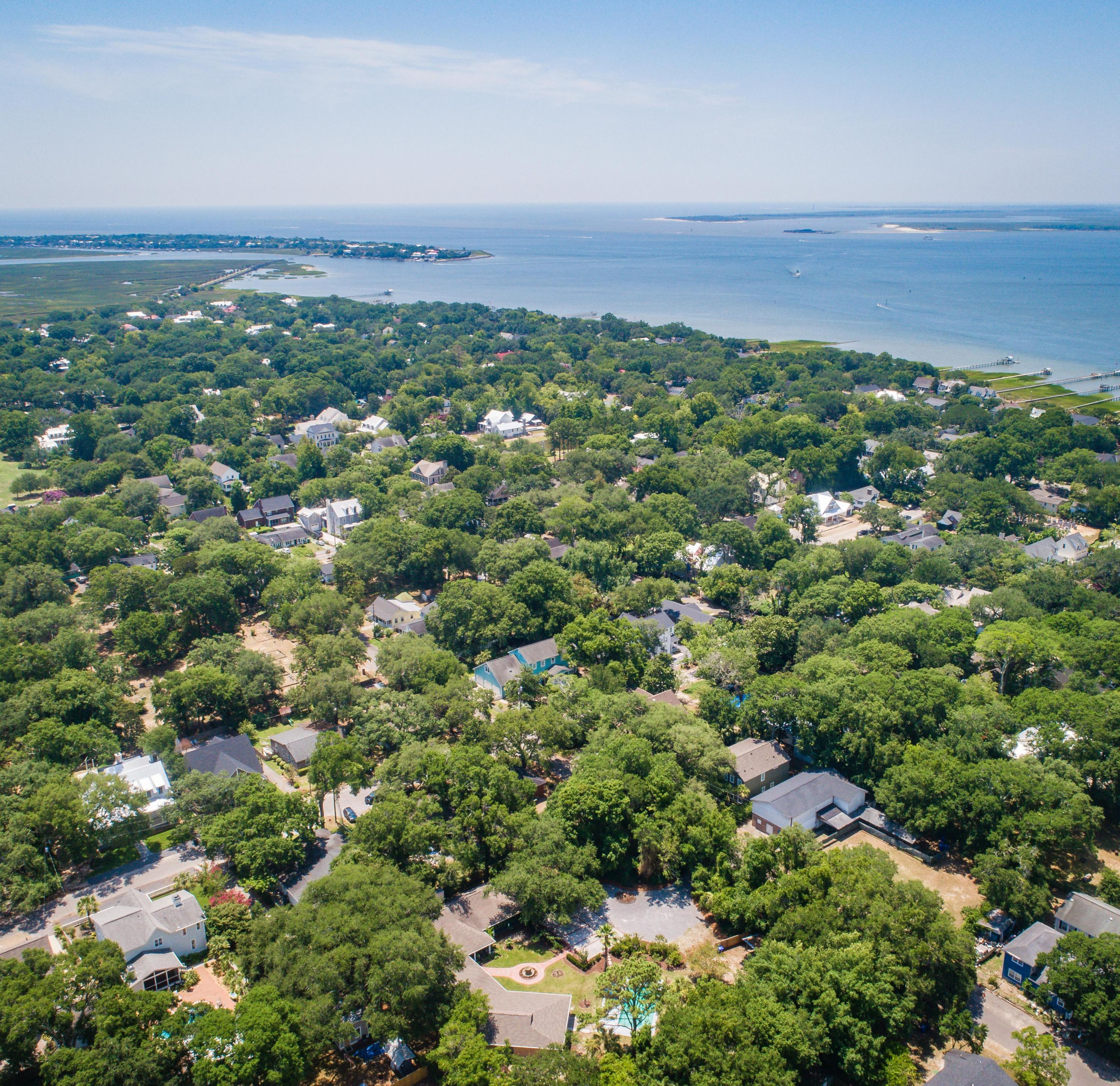 Old Village Homes For Sale - 424 Greenwich, Mount Pleasant, SC - 21