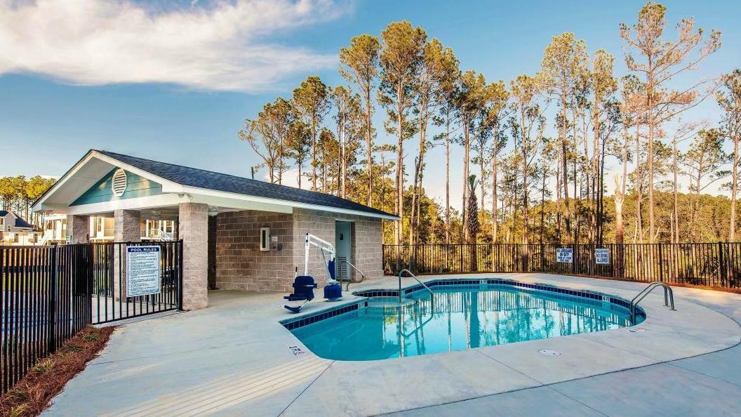 St Thomas Preserve Homes For Sale - 317 Coki Amalie, Charleston, SC - 0