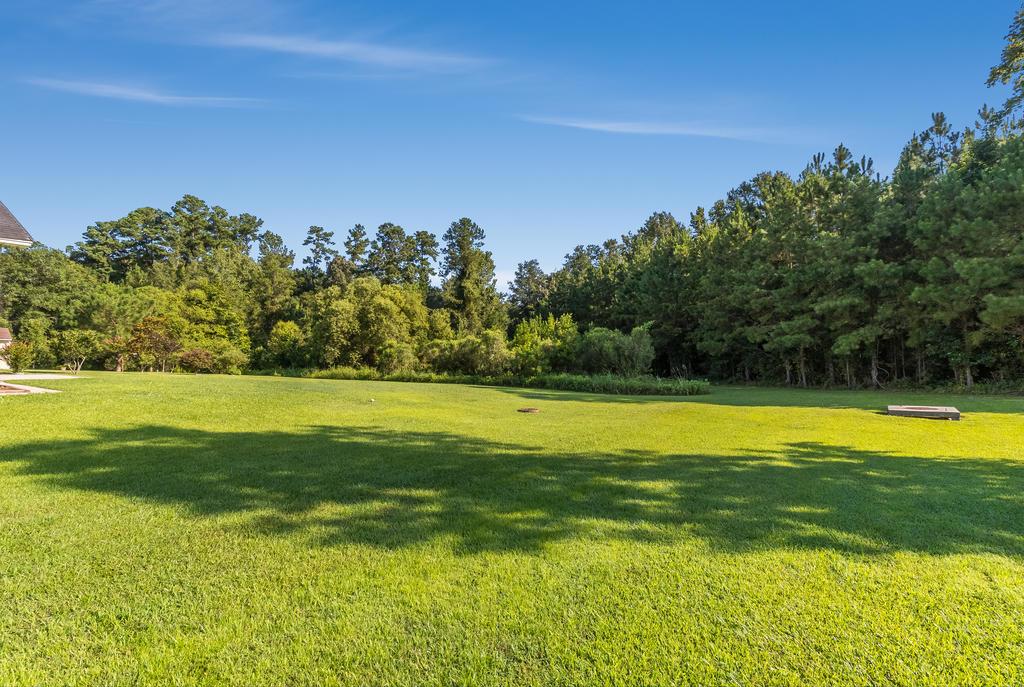Felder Creek Homes For Sale - 227 Meadow Wood, Summerville, SC - 26