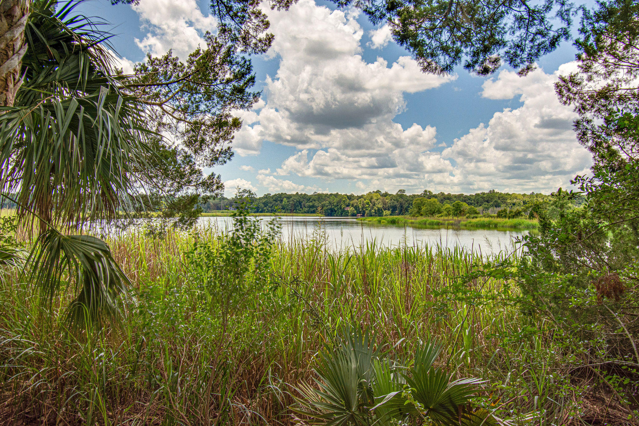 Summers Bend on the Ashley Homes For Sale - 8399 Spring Farm Gate, North Charleston, SC - 0