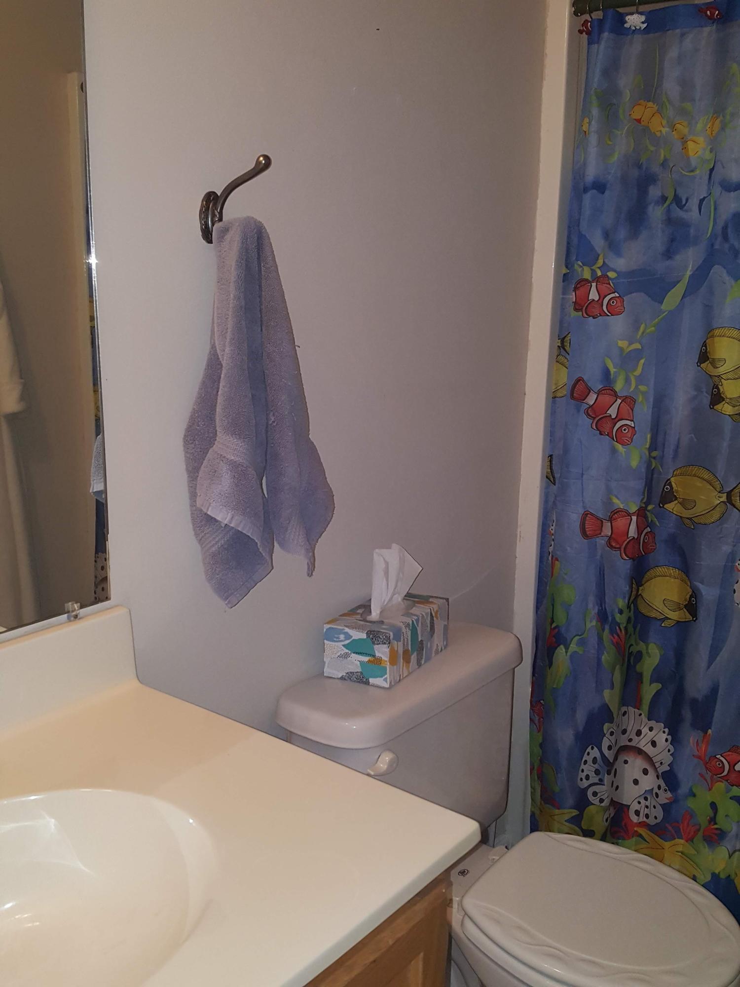 Scotts Mill Homes For Sale - 117 Blue Jasmine, Summerville, SC - 10