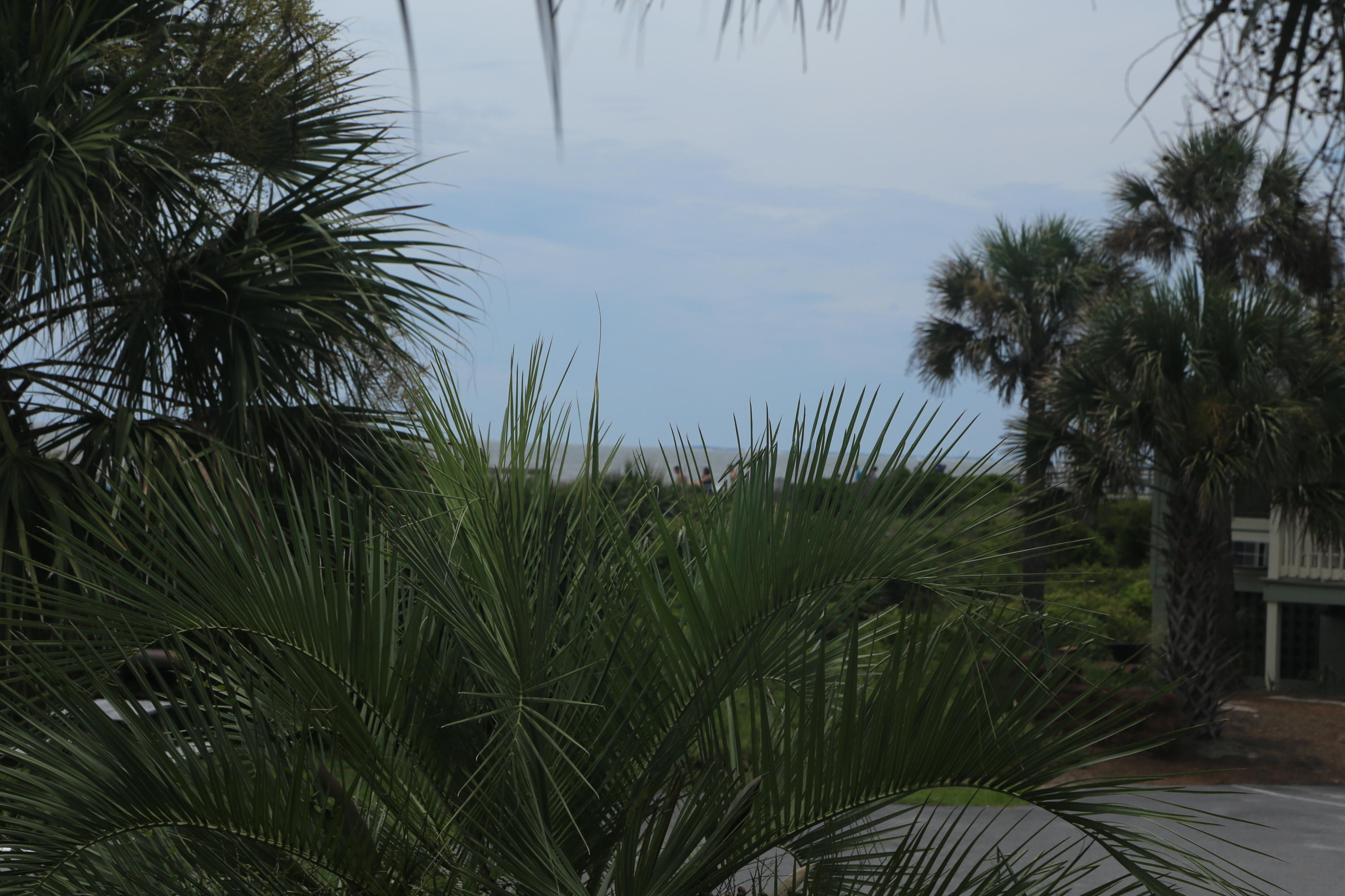 Sea Cabin On The Ocean Homes For Sale - 1300 Ocean, Isle of Palms, SC - 21