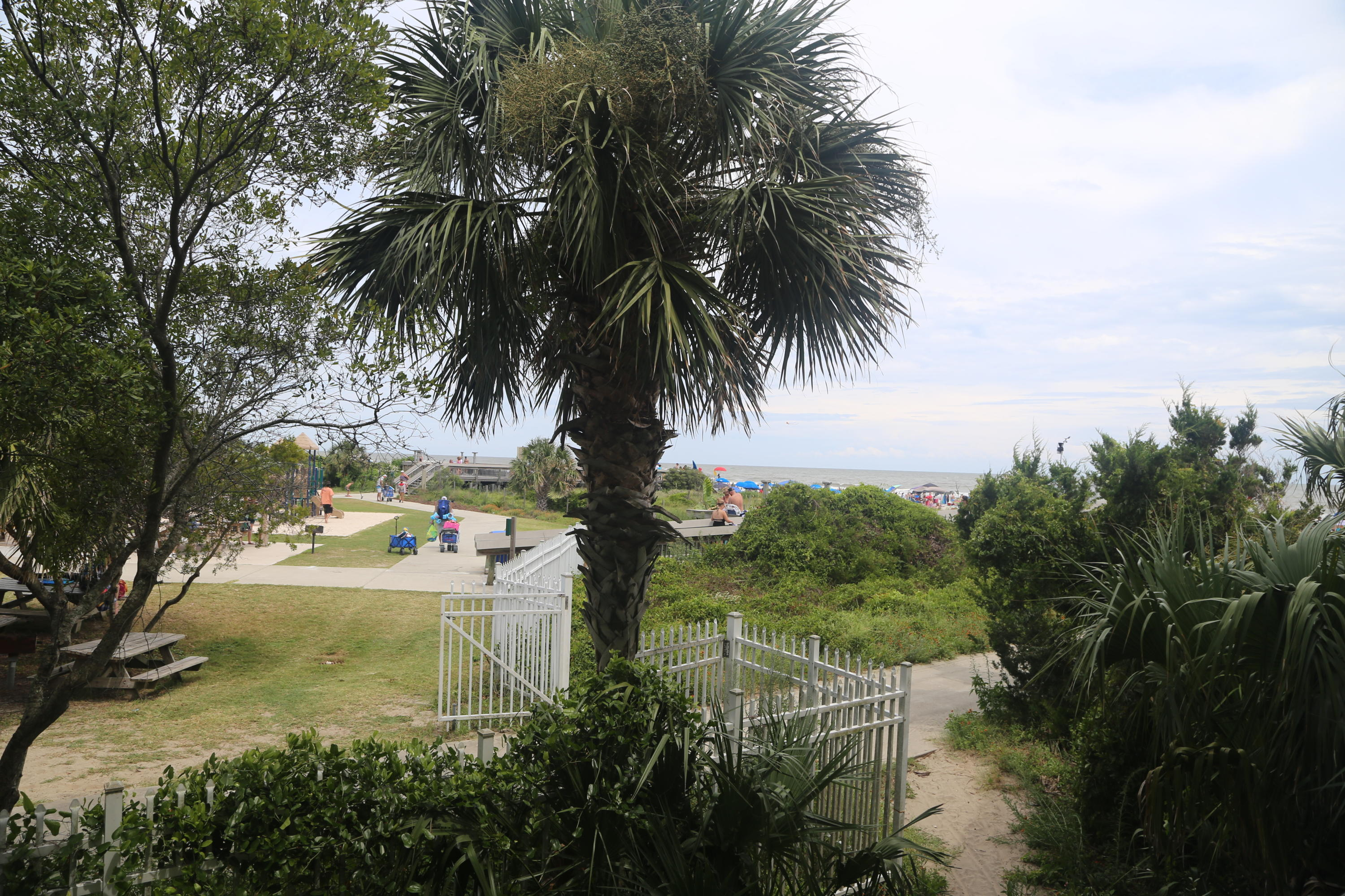 Sea Cabin On The Ocean Homes For Sale - 1300 Ocean, Isle of Palms, SC - 20