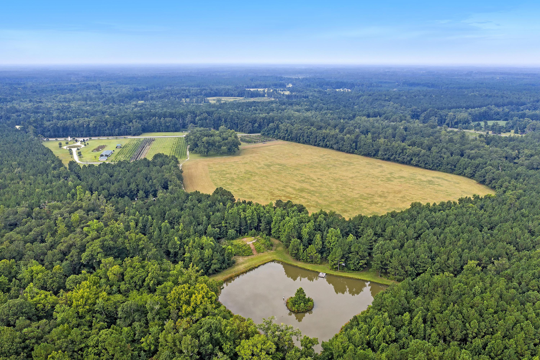 None Homes For Sale - 7826 Sniders, Walterboro, SC - 4