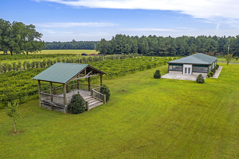None Homes For Sale - 7826 Sniders, Walterboro, SC - 13