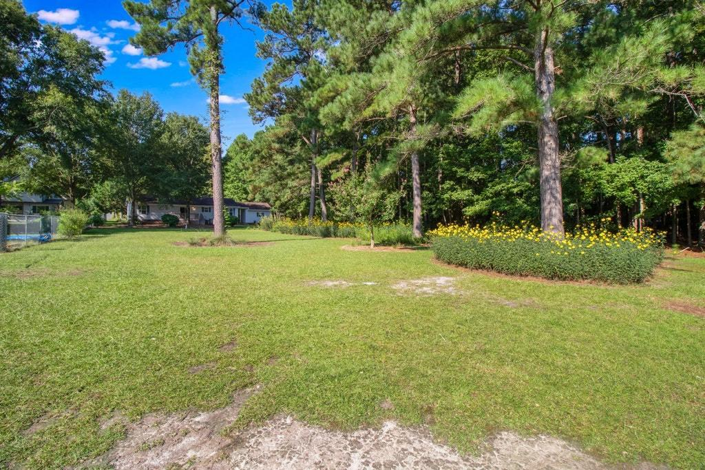 Plantation II Homes For Sale - 155 Meredith, Eutawville, SC - 46