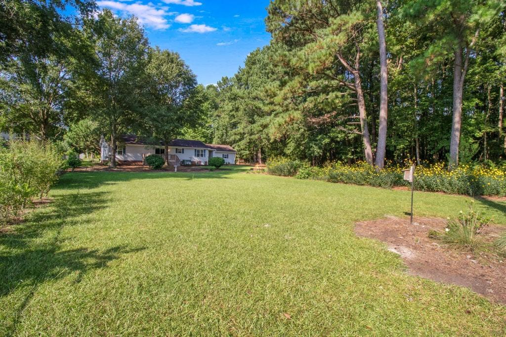 Plantation II Homes For Sale - 155 Meredith, Eutawville, SC - 45