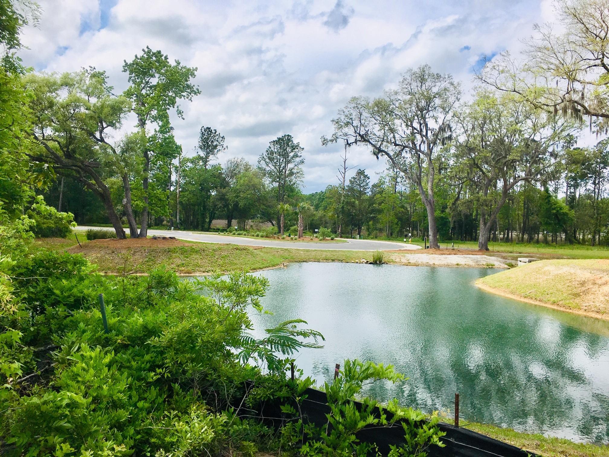Church Creek Landing Homes For Sale - 2305 Town Woods, Charleston, SC - 33
