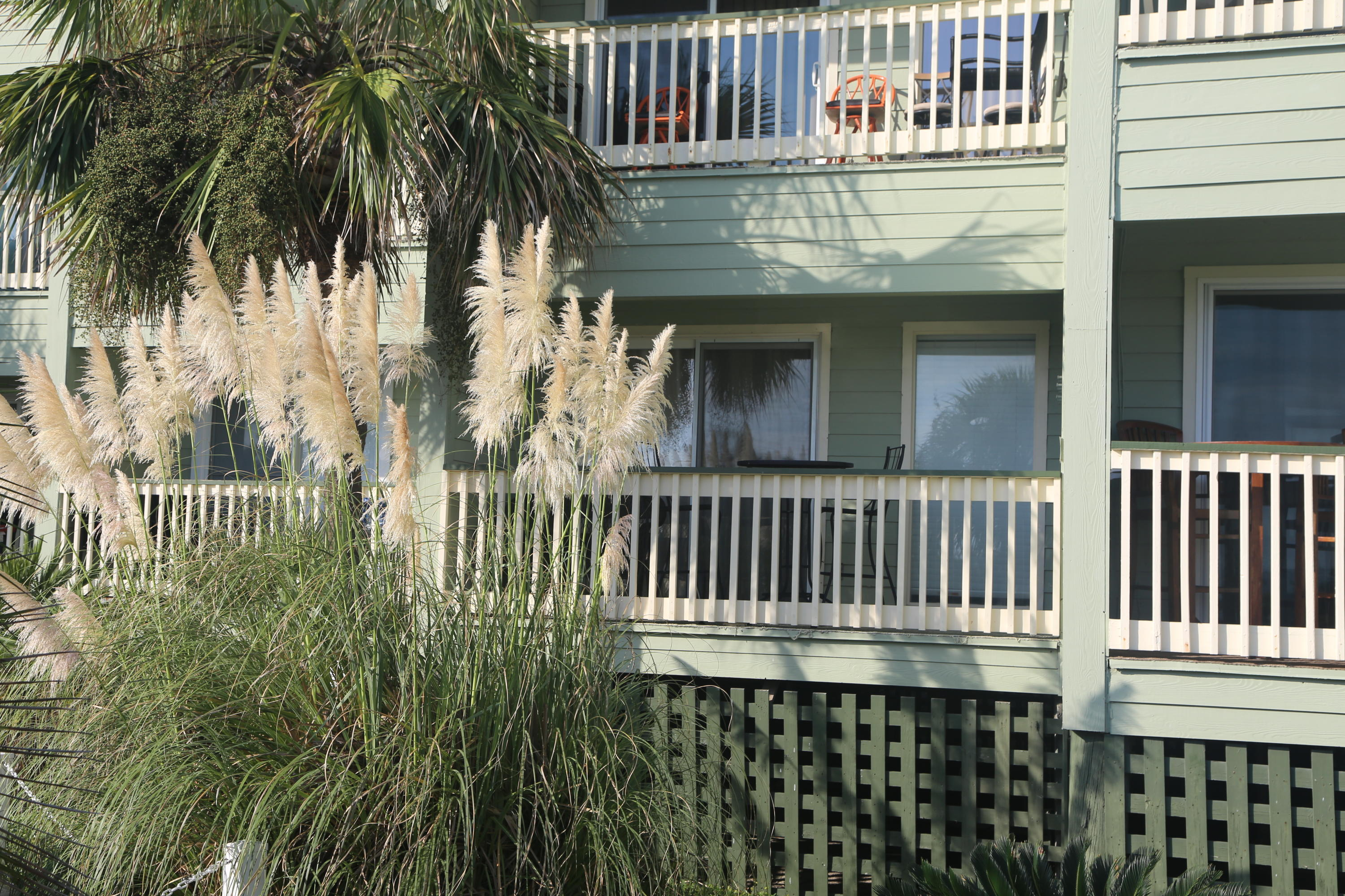 Sea Cabin On The Ocean Homes For Sale - 1300 Ocean, Isle of Palms, SC - 47