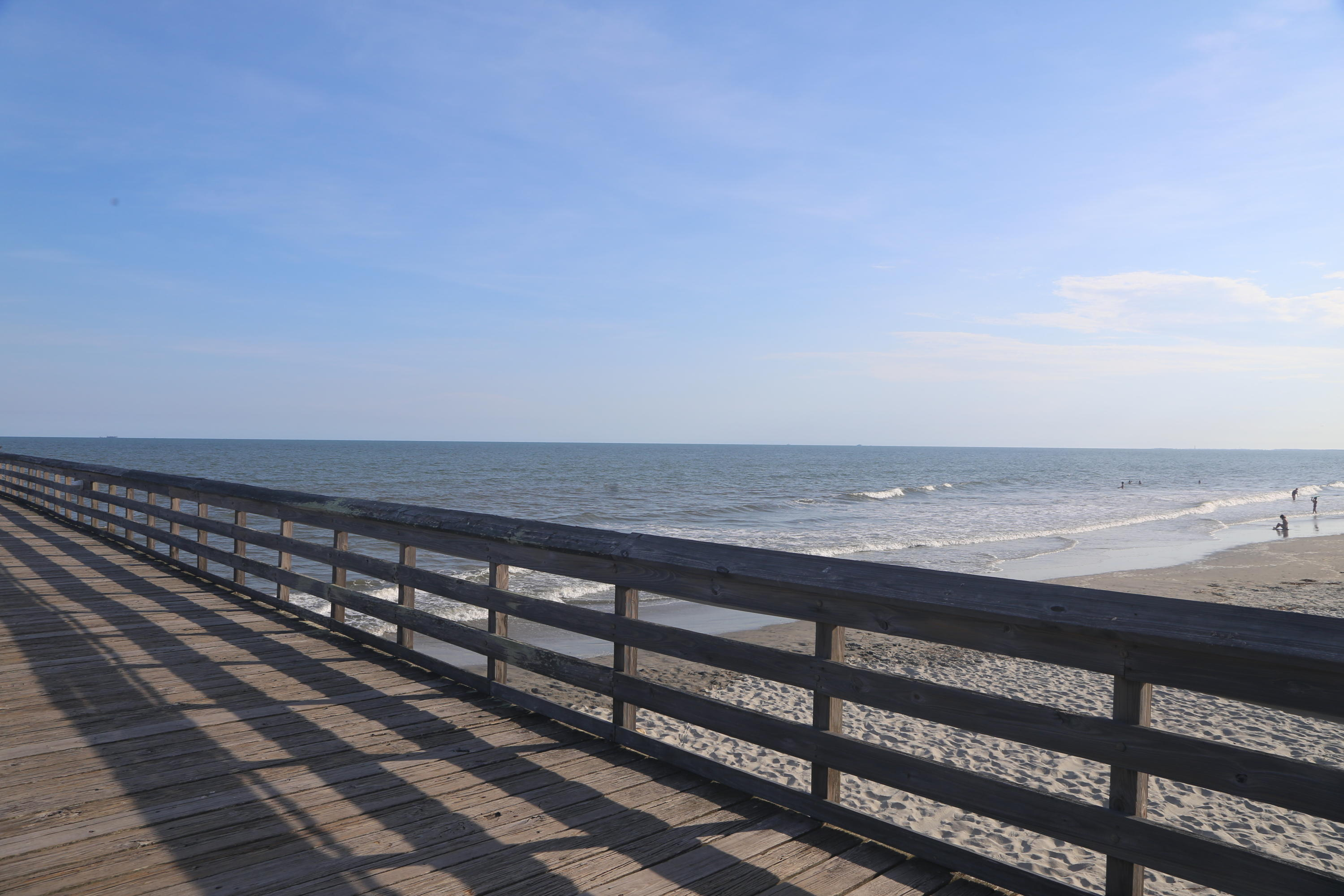 Sea Cabin On The Ocean Homes For Sale - 1300 Ocean, Isle of Palms, SC - 14