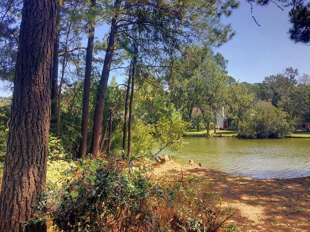 Center Lake Homes For Sale - 1318 Center Lake, Mount Pleasant, SC - 21